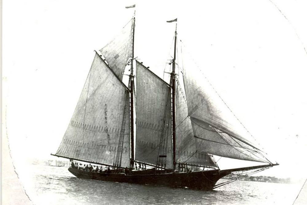 1894 Morrissey