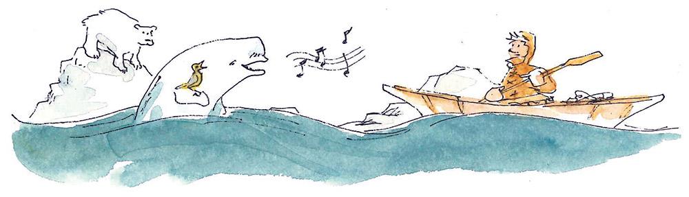 Beluga Cartoon