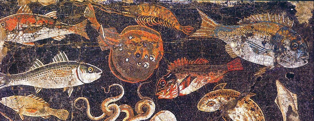 Electric Ray Pompeii Mosaic