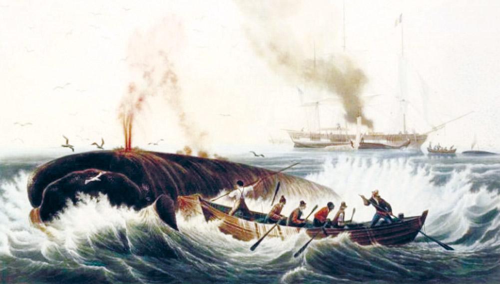 Garnery Whale Hunt