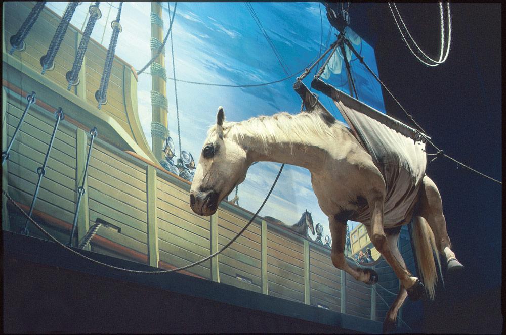 Horse Sling