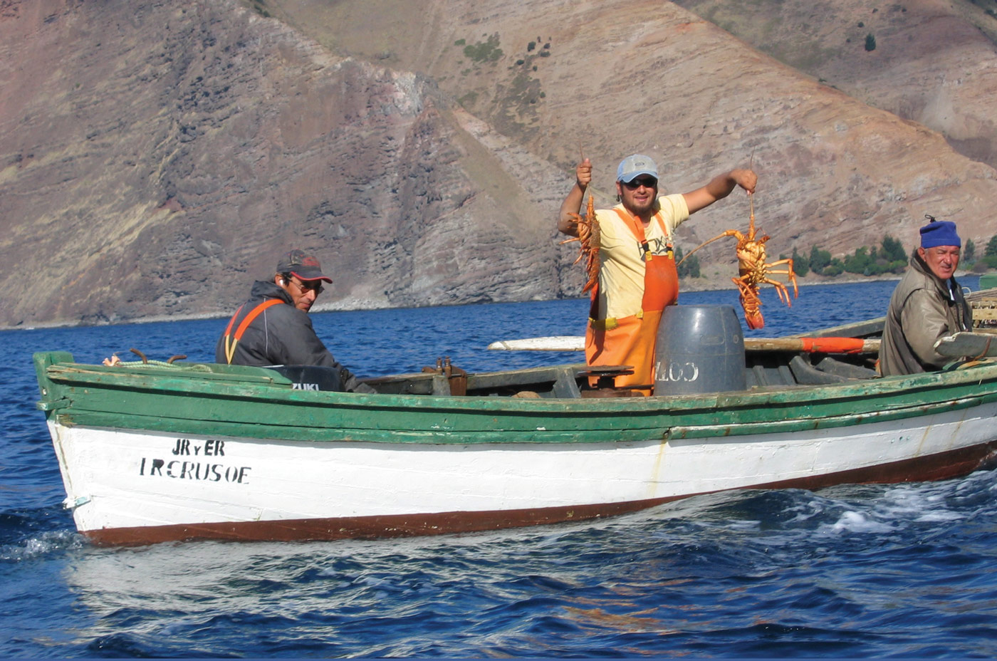 Isla Juan Fernandez Lobsters
