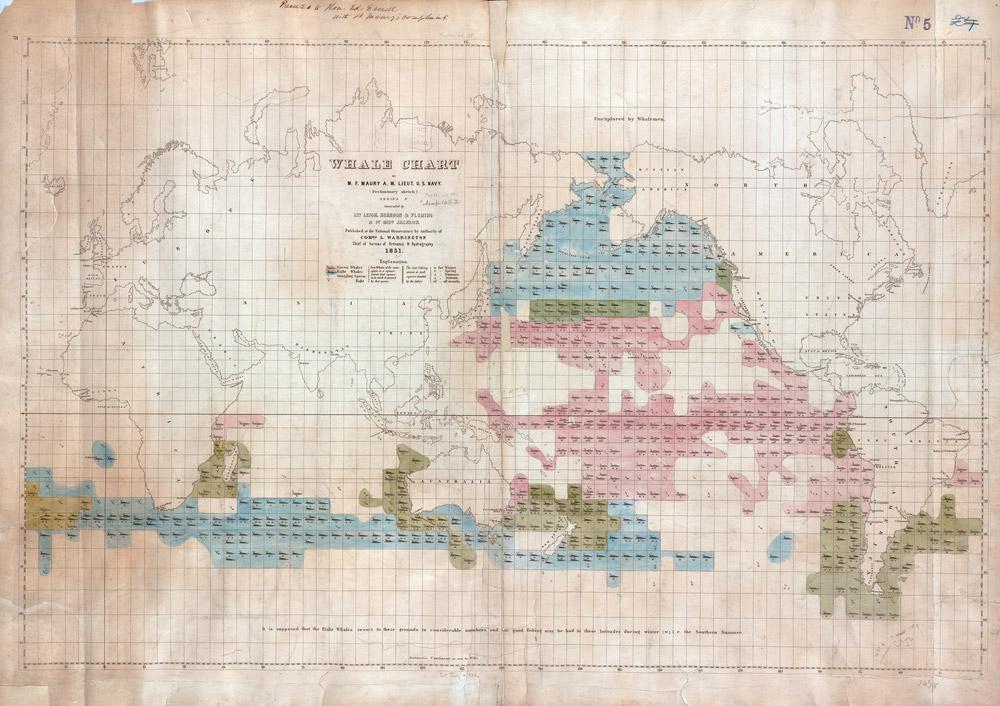 Maury Whale Chart