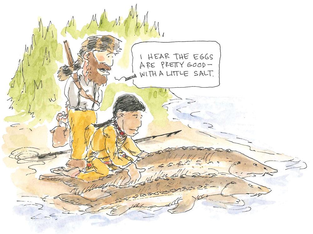 Sturgeon Cartoon