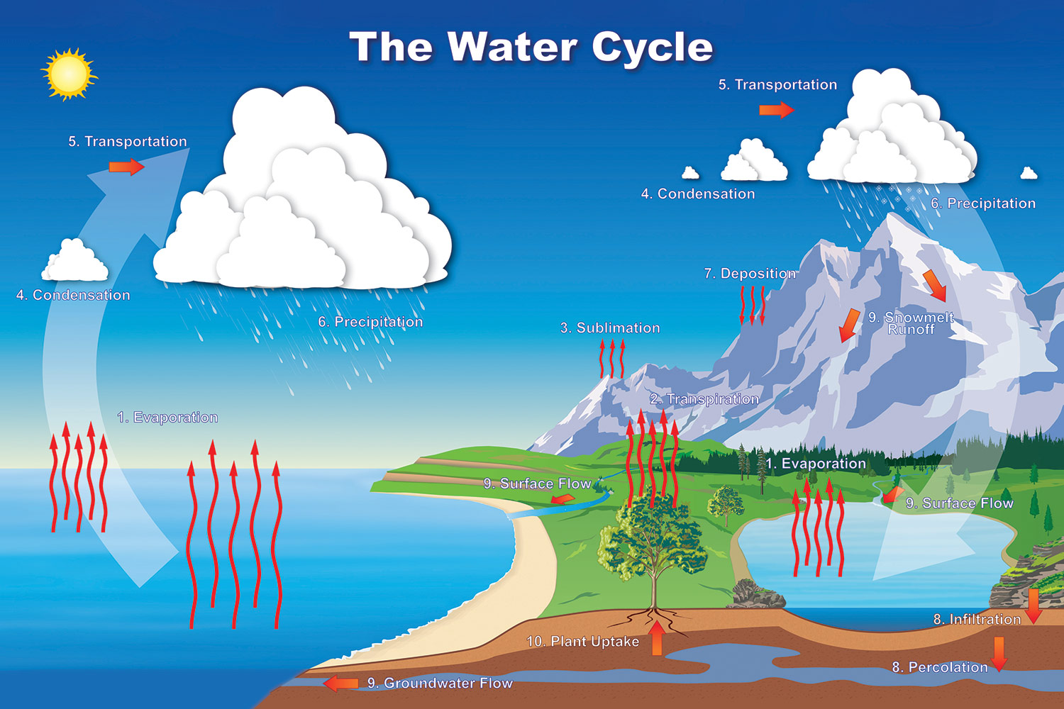 Water Cycle NOAA